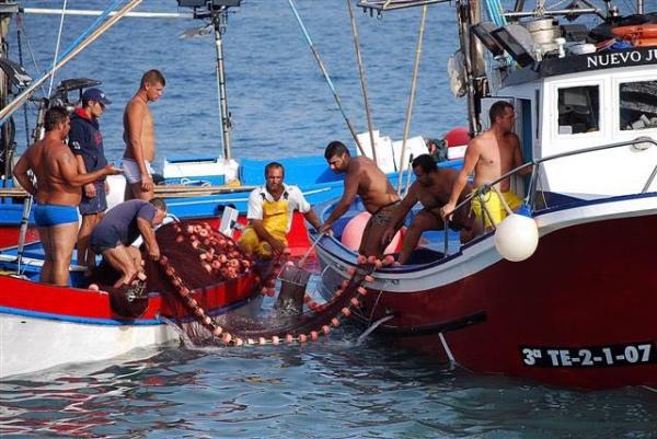 Resultado de imagen de El Gobierno de Canarias destina 737.000 euros en ayudas a las cofradías de pescadores de las Islas